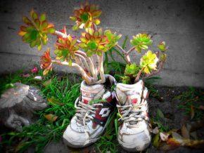 9 клумба из обуви