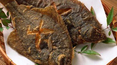 Камбала на сковороде: вкусный и быстрый способ приготовления